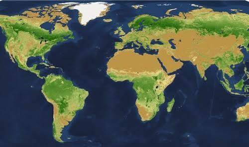 Thủ phạm triệt hạ phân nửa cây xanh trên Trái Đất