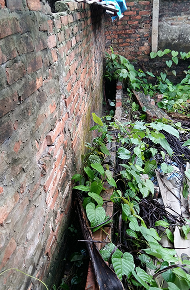Nữ sinh bị sát hại, xác giấu ở vườn rau cạnh nhà nghi phạm
