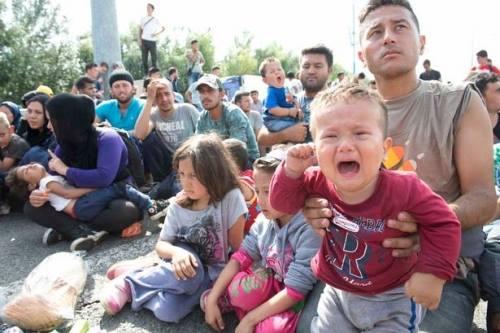 Hàng trăm người tị nạn tuyệt vọng ở biên giới Serbia - Hungary. Ảnh: Mirror