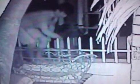 Nghi phạm sát hại thiếu nữ trước đài phun nước sa lưới