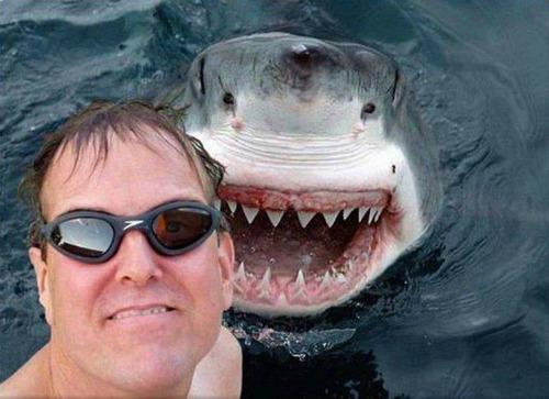 """Cười lên, chúng ta cùng chụp một """"pô"""" nhé!"""