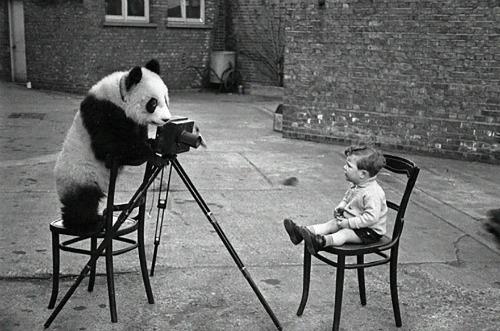Ngồi yên cho tớ chụp ảnh nhé!
