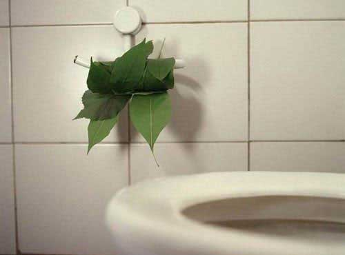 Trở về thời tiền sử với lá cây...