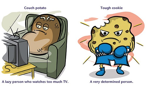 Couch potato (n): a very lazy person who watches too much TV. Example: My uncle is a couch potato, you never see him without the remote control in his hand.  Tough cookie (n): a very determined person, durable and robust person, a person who is difficult to deal with. Example: There is a tough cookie on the phone, he insists to talk to the manager, shall I put him through?