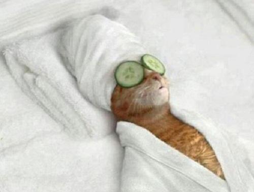 Thư giãn sau ngày dài mệt mỏi.