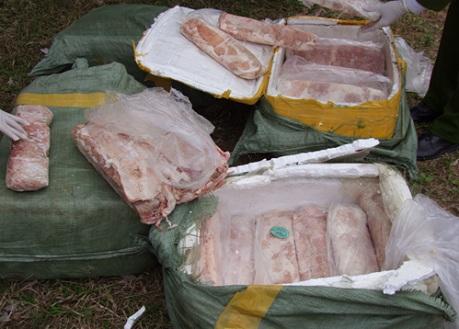 Chặn nửa tấn nầm lợn thối từ Trung Quốc tuồn qua biên giới