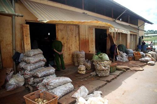 Lập chốt ngăn khoai tây ngoại nhập vào chợ nông sản Đà Lạt 1