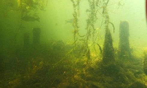 Phát hiện đền thờ trong lòng hồ lớn nhất Nhật Bản