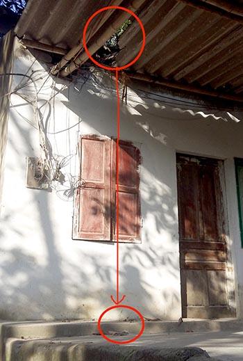 Viên đá xuyên mái nhà, rơi trúng đầu làm tài xế tử vong 2