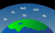 Điều gì xảy ra nếu như Trái Đất có nhiều khí oxy hơn?