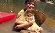 Bé 12 tuổi đỡ đẻ cho cá đuối gai độc
