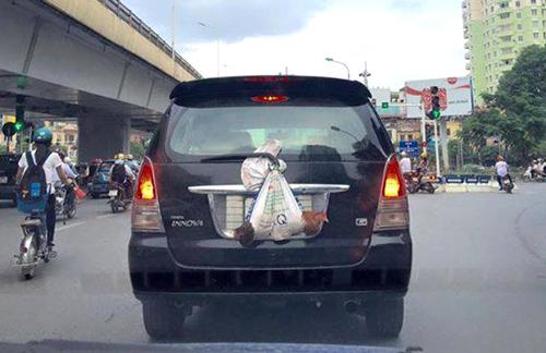 Văn hóa tùy tiện của tài xế Việt 1