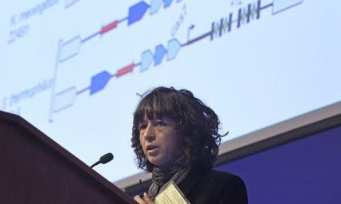 Chỉnh gene phôi thai người - cuộc chiến giữa kỹ thuật và đạo đức