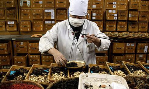 90% thuốc đông y Trung Quốc ở Australia có độc