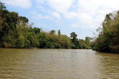 Đồng Nai không muốn mở đường xuyên Vườn quốc gia Cát Tiên 1