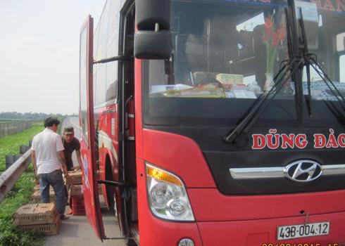 Dân phá rào chắn, mở quán nước trên cao tốc Nội Bài - Lào Cai
