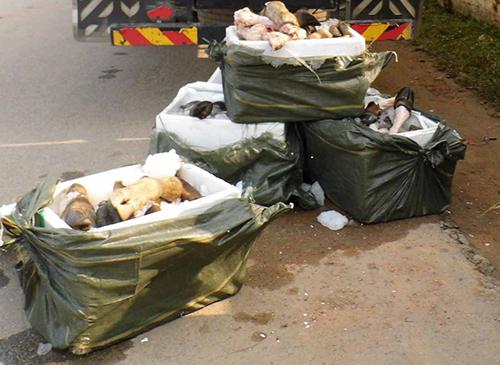 700kg chân trâu bò thối trên đường vào Nam tiêu thụ 1