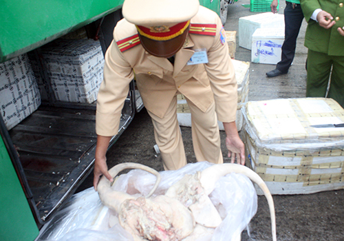 Xe khách bị phát hiện chở thịt bẩn do không bật đèn 1