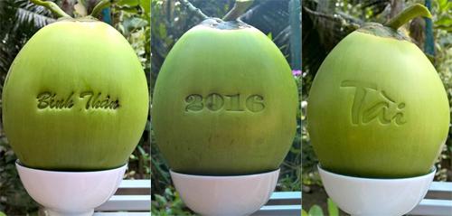 Lần đầu tiên sản phẩm độc lạ làm từ trái dừa được trình làng trong dịp Tết Nguyên đán 2016. Ảnh: Cửu Long