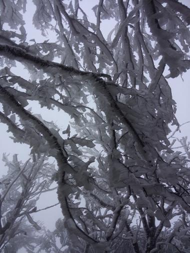 Mẫu Sơn rét âm 2 độ C, băng giá tràn ngập 2