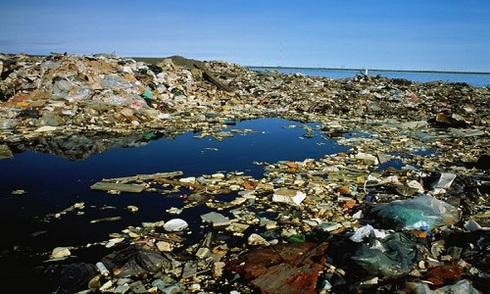 Rác nhựa thải xuống biển nhiều hơn số lượng cá vào năm 2050