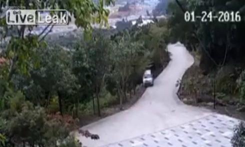 Nguy hiểm chết người khi không thắt dây an toàn