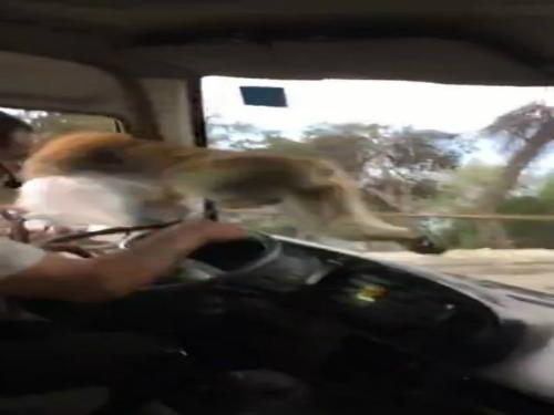 Taxi thô bạo chèn xe cứu thương 2