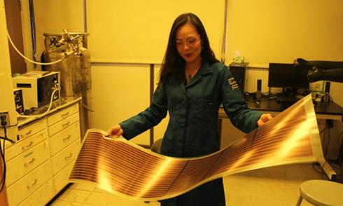 Nhà khoa học nữ gốc Việt trong top ảnh hưởng nhất thế giới