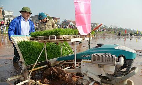 Bí thư, Chủ tịch Hà Nội đi cấy cùng nông dân