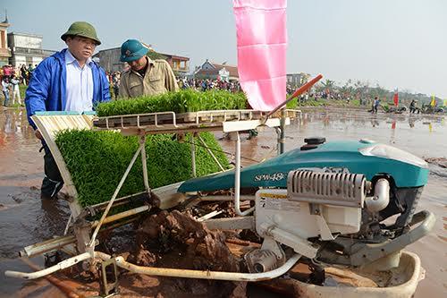 Bí thư, Chủ tịch Hà Nội đi cấy cùng nông dân 1