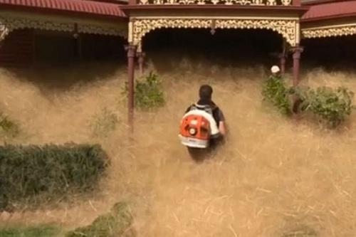 co-dai-nuot-chung-thi-tran-australia