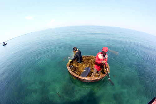 3 ngư dân mất tích trên biển khi đang đánh bắt tôm 1