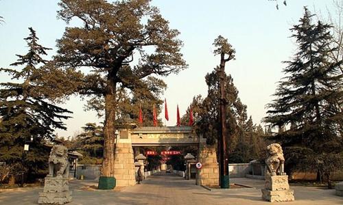 Thiếu đất ở, Trung Quốc khuyên dân tiết kiệm đất chôn 2