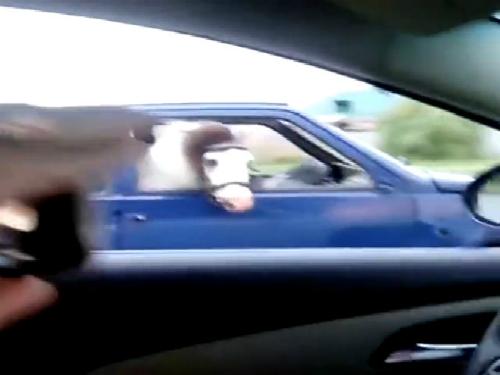 Ống bê tông giết chết tài xế khi phanh gấp 5
