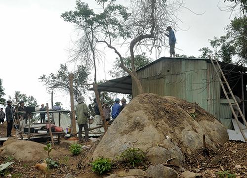 Hạt trưởng kiểm lâm mất chức vì để xảy ra phá rừng 1