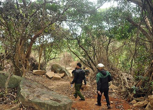 Hạt trưởng kiểm lâm mất chức vì để xảy ra phá rừng 2