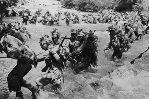 Trung đoàn lính Nhật bị cá sấu xóa sổ trên đảo hoang 1
