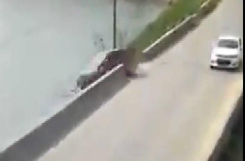 Ôtô lao xuống hồ vì tài xế ngủ gật 1