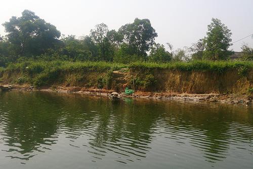 Ruộng vườn trôi sông vì cát tặc 2