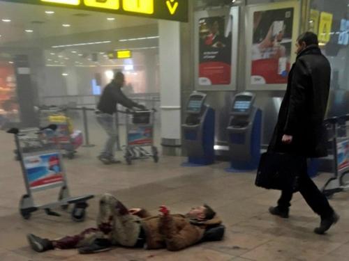 Đánh bom Brussels, IS có thể đang hoảng loạn 1