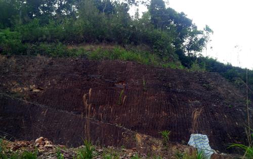 Bí thư huyện có thể bị phạt vì đào núi 'làm hầm rượu' 2