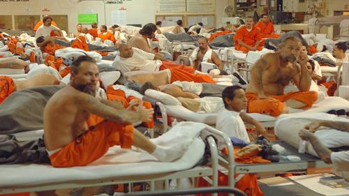 Luật Mỹ quy định thế nào về tội Minh Béo bị cáo buộc 2