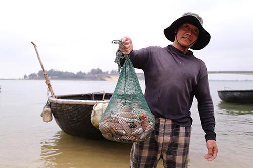 Ngư dân gác chèo, treo lưới vì họa cá chết 1