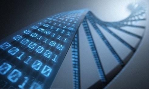 Lưu trữ hình ảnh kỹ thuật số trong ADN