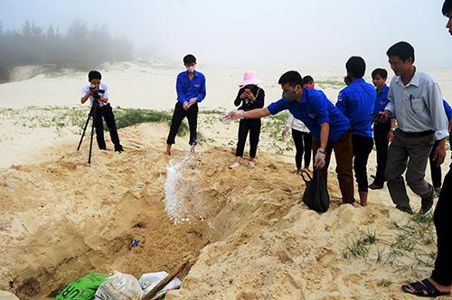 Nhiều tấn cá chết được chôn dọc bờ biển miền Trung 1