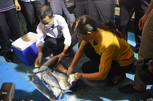 Bộ trưởng Trương Minh Tuấn mua cá ăn tại chỗ