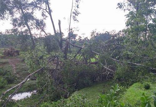 Lốc xoáy tốc mái 500 nhà, làm nhiều người bị thương ở Hà Tĩnh 3