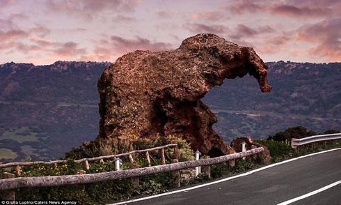 Voi đá khổng lồ trấn giữ đường quốc lộ ở Italy