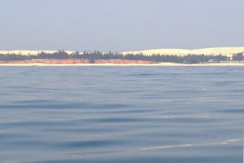 Không phát hiện tế bào tảo trong mẫu nước đỏ ở Quảng Bình