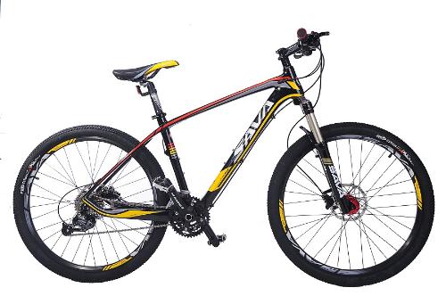 SAVA cột mốc của xe đạp carbon giá rẻ 1